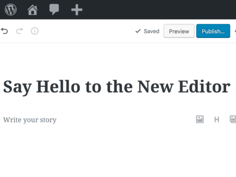 Wordpress v.5 update breaks the Classic Editor